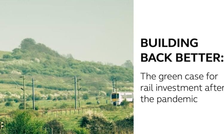 Building Back Better report